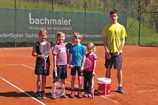 Bgd-spielt-Tennis-300416-05l